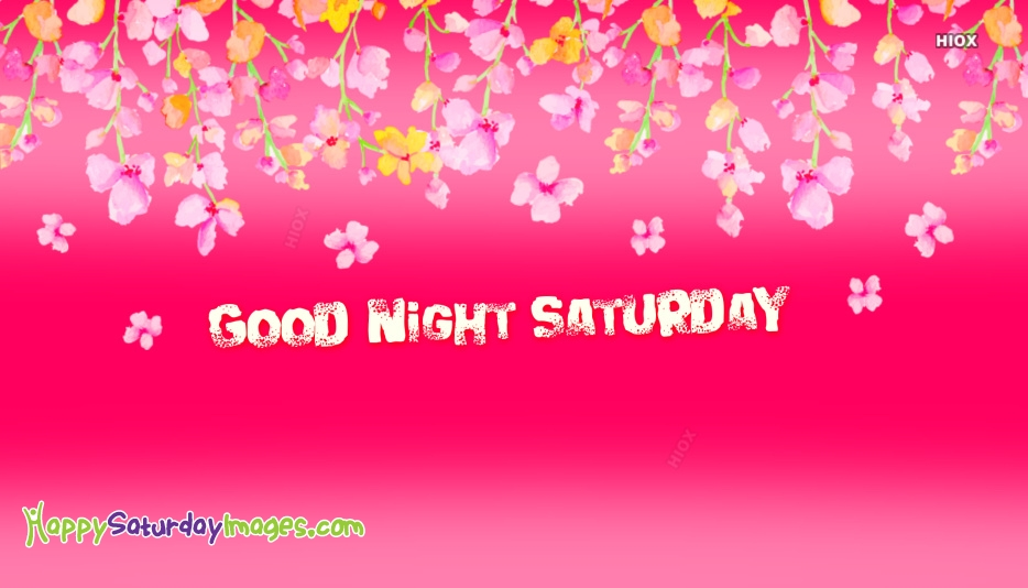 Good Night Saturday Pictures
