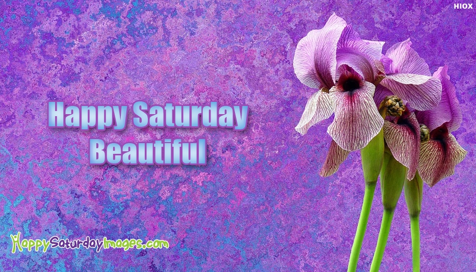 Happy Saturday Beautiful - Happy Saturday Images for Lover