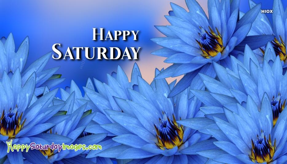 Happy Saturday Blue Flower