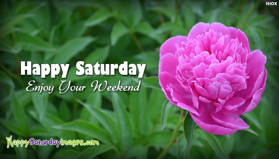 Happy Saturday Enjoy Your Weekend - Happy Saturday Images for Weekend