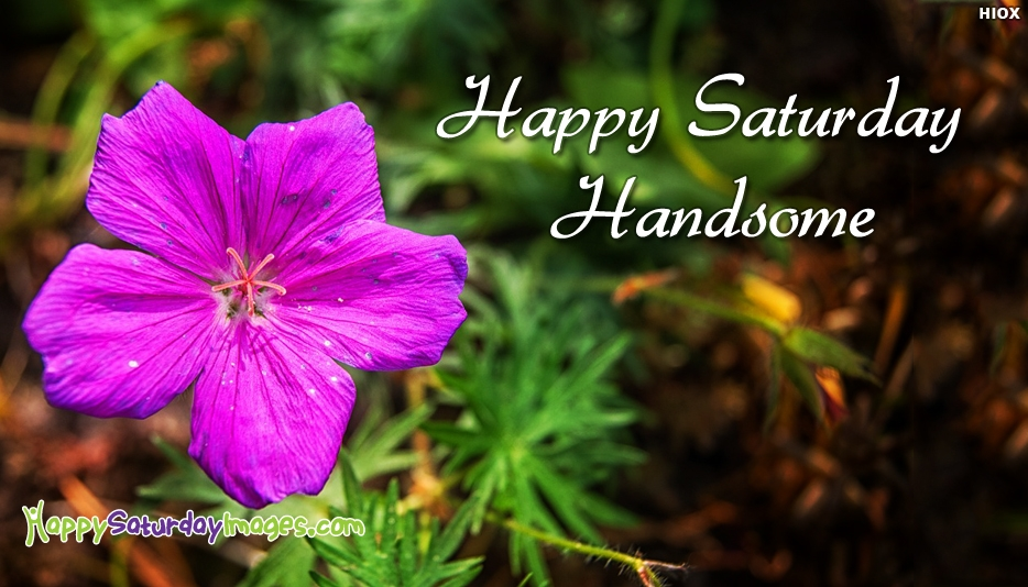 Happy Saturday Images for Handsome