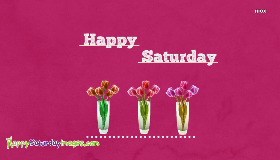 Happy Saturday Images With Pink Flowers
