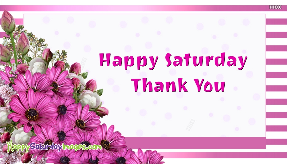Happy Saturday Thank You