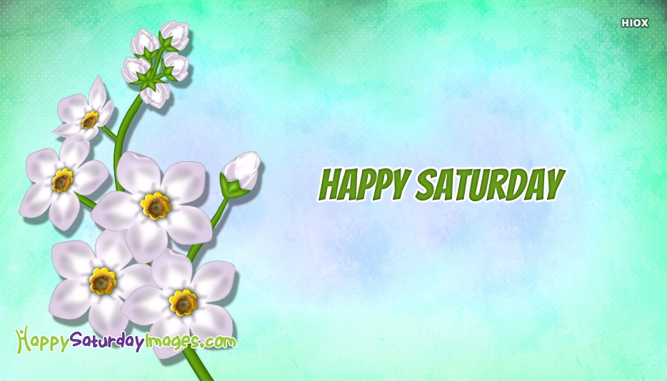Happy Saturday White Flowers Images