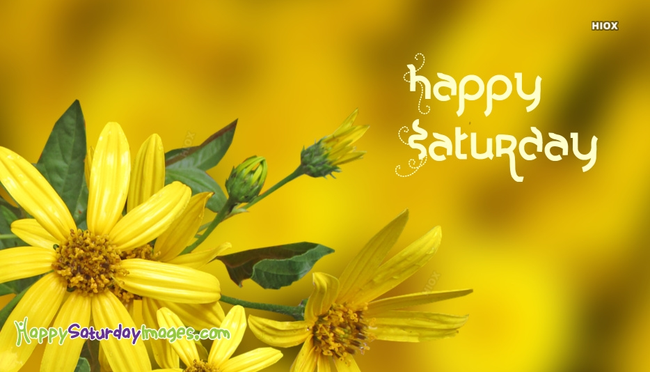 Happy Saturday Yellow