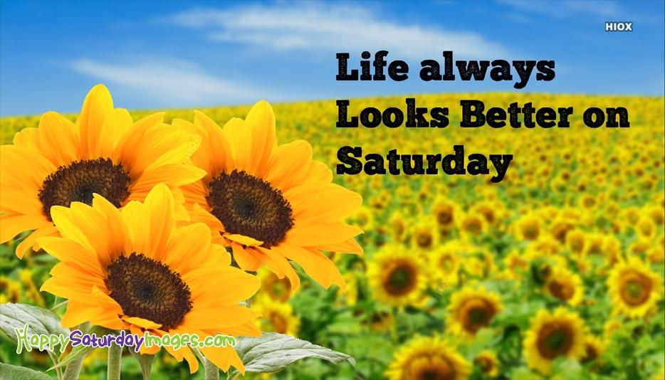 Life Always Looks Better On Saturday