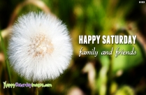 Happy Saturday Everyone! Have A Great