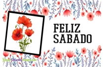 Happy Saturday Feliz Sabado