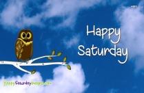 Happy Saturday Owl
