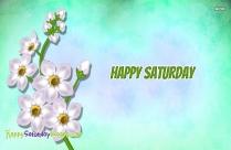 Happy Saturday White Flower